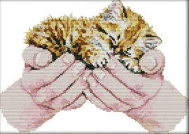 Cross Stitch / Baby cat