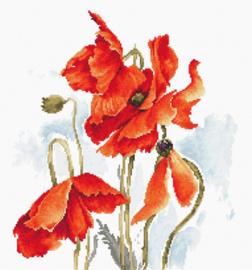 Borduurpakket The Poppies - Luca-S    ls-b2374
