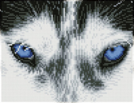Diamond Dotz Mystic Husky - Needleart World  nw-dq07-004