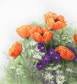 Borduurpakket Poppies - Luca-S    ls-b2368