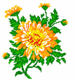 Voorbedrukt Aida Calendula Flower - Matryonin Posad    mp-0479