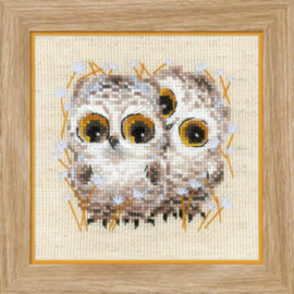 Borduurpakket Little Owls - RIOLIS / Kleine Uilen  ri-1755