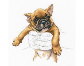 Borduurpakket In Palms - French Bulldog - RTO    rto-m00821