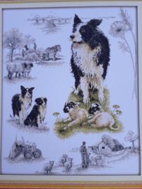 Cross Stitch / Herding dog