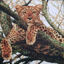 Cross Stitch / The cheetah