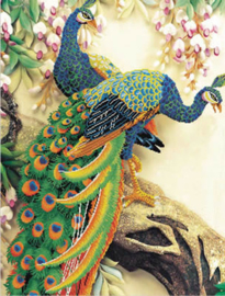 Voorbedrukt borduurpakket Peacock Majesty - Needleart World    nw-nc850-004