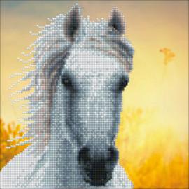 Diamond Art White Horse - Leisure Arts    la-da02-50461