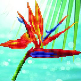 Diamond Art Bird of Paradise - Leisure Arts    la-da01-50498
