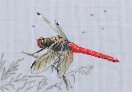 Borduurpakket Dragonfly - RTO    rto-m00757