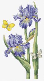 Borduurpakket May Iris - Luca-S  ls-b7001