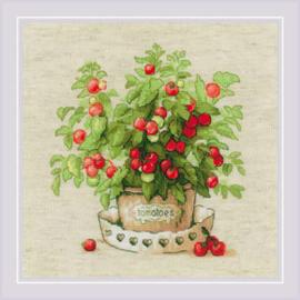Borduurpakket Tomatoes in a Pot - RIOLIS  ri-1983