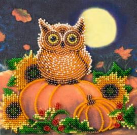 Kralen borduurpakket Night Guest - Abris Art    aa-am-190