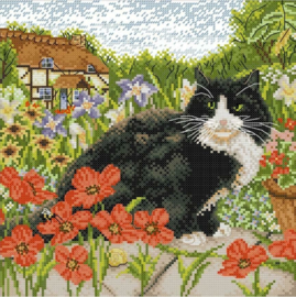 Cross Stitch / The cat and poppy