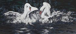 Diamond Painting White Swans - Freyja Crystal    fc-alvr-022-012