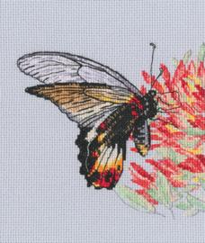 Borduurpakket Nectar for Butterfly - RTO    rto-m00755