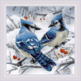 Borduurpakket Blue Jays - RIOLIS    ri-1925
