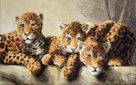 Borduurpakket Leopards - Leti Stitch    leti-0910