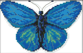 Cross Stitch / The blue butterfly