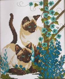 Cross Stitch / Two baby cats