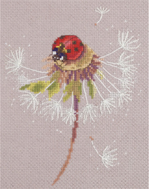 Borduurpakket Split Seconds of Summer - Ladybird - PANNA    pan-7034-ps