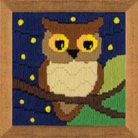 Borduurpakket Owl Among the Stars - RIOLIS / Uil