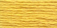 Venus Borduurgaren kleurnummer 2031 / goud