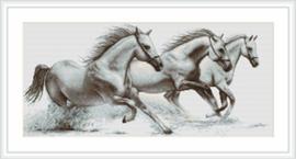 Petit Point Borduurpakket White horses - Luca-S    ls-g495