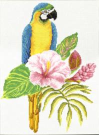 Voorbedrukt borduurpakket Hibiscus Macaw - Needleart World    nw-nc440-098