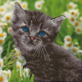 Diamond Art Kitten - Leisure Arts    la-da02-50455