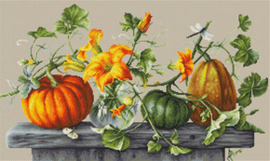 Borduurpakket Pumpkins - Luca-S    ls-b2303