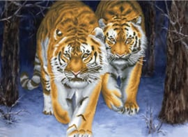 Voorbedrukt borduurpakket Stalking Tigers - Needleart World    nw-nc750-042