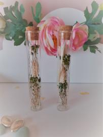 Droogbloemen in proefbuisje - groen en wit
