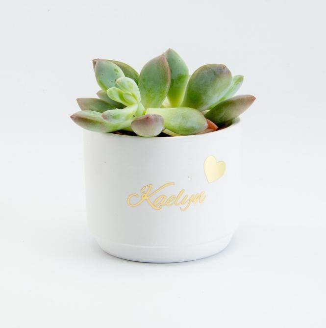 Keramiek bloempotje wit