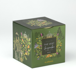 Blik Groene Thee 'Gingembre 2 Citrons' (24 zakjes) - Plantasia
