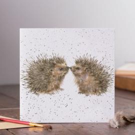Wenskaart 'Hogs and Kisses' - Wrendale Designs