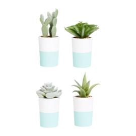 Kunstplant in Pot (11 cm.) - Sema Design