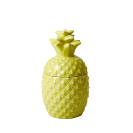 Voorraadpot Ananas (21 cm.) - Rice