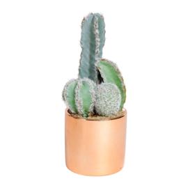 Kunstcactus in Pot (19 cm.) - Sema Design