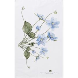 Theedoek Blue Anemone - Koustrup & Co.