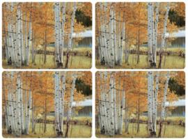 4 Placemats (40,1 cm.) - Pimpernel Birch Beauty