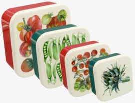 Snack Boxes Vegetable Garden - Emma Bridgewater