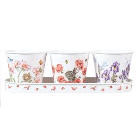 Set 3 Kruidenpotjes met Houder Floral - Wrendale Designs