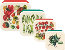 Snack Boxes Vegetable Garden - Emma Bridgewater