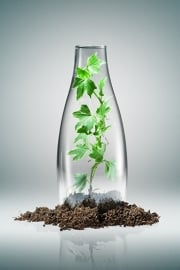 Retap waterfles 800ml met mos groene dop