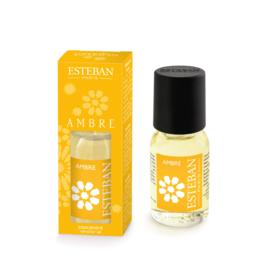 Fragrance Oils & Burners
