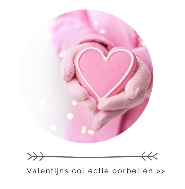 Valentijns collectie oorbellen zilver en staal
