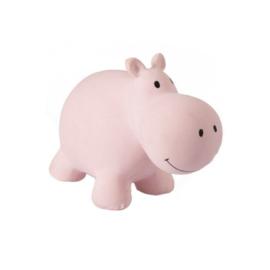 Mijn eerste zoogdiertje HIPPO