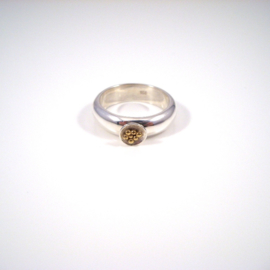Ring 1. DOTS