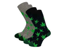 4 paar SQOTTON - Naadloze sokken - Wiet