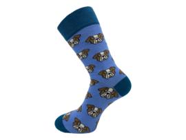 SQOTTON - Naadloze sokken - Dog Face